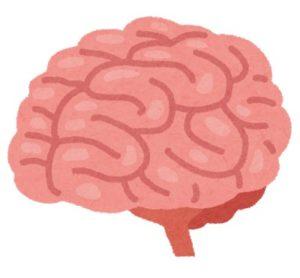 脳の働きは面倒くさい